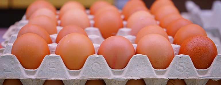 win a year's supply of eggs